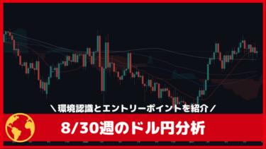 8/30週のドル円(USDJPY)環境認識とエントリーポイント